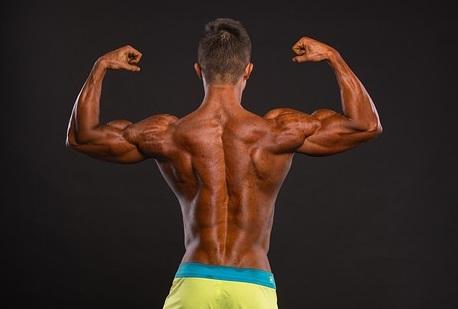 bodywieght back exercises