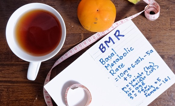 basal metabolic rate BMR
