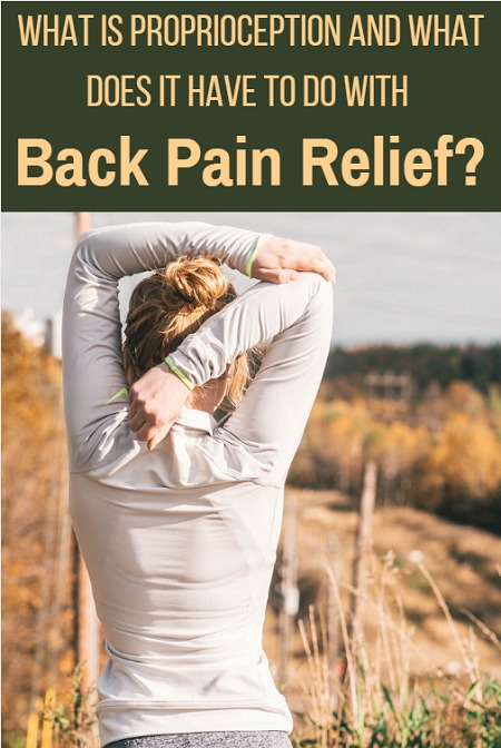 What is proprioception and what does is have to do with back pain relief?