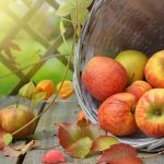 Top 15 Uses and Health Benefits of Apple Cider Vinegar